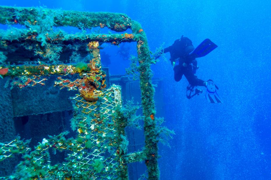 zenovia wreck diving cyprus