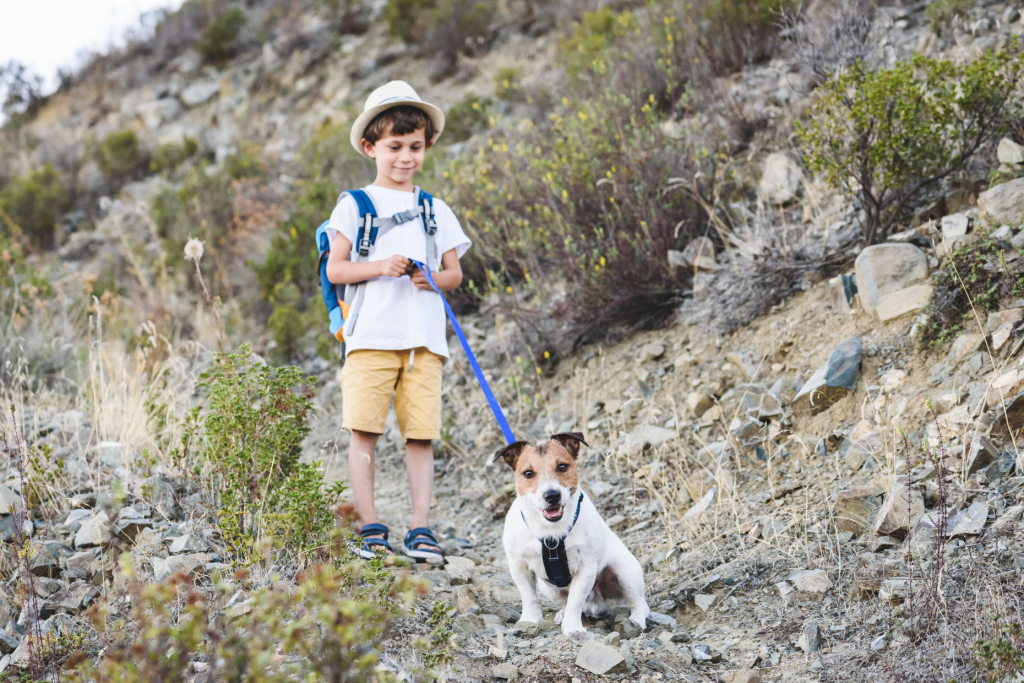 little boy walking a dog in the mountains cyprus
